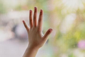 Mosquitera barata en una ventana